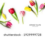 Tulip Spring Flowers With...