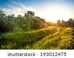 Beautiful Summer Landscape Ban...