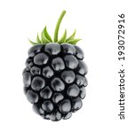 Single Fresh Blackberry...