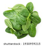 Pile Of Spinach Leaves Close Up ...