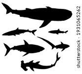vector set of silhouette sharks.... | Shutterstock .eps vector #1931065262