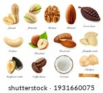 nuts  seeds and beans 3d vector ... | Shutterstock .eps vector #1931660075