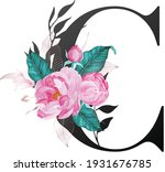 beautiful alphabet collection... | Shutterstock .eps vector #1931676785