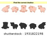 Find Correct Shadows Of Cute...