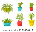 collection of home plants in... | Shutterstock .eps vector #1931836412