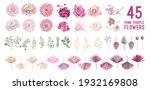 dried pampas grass  dahlia ... | Shutterstock .eps vector #1932169808