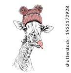 funny giraffe in the pink... | Shutterstock .eps vector #1932172928