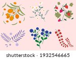 set of berries and herbs for... | Shutterstock .eps vector #1932546665