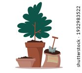 flowerpot with ground  potted... | Shutterstock .eps vector #1932983522