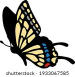 Beautiful And Cute Butterfly...