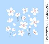 spring tree blossom set. white... | Shutterstock .eps vector #1933096262