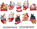 Sweet Set Watercolor Bunny In A ...