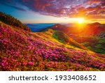 Picturesque Summer Sunset With...