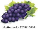 Fleshy Sweet Black Grape...