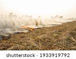 Farmers Burn Straw To Prepare...