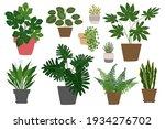 houseplants. tropical plants in ... | Shutterstock .eps vector #1934276702