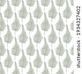fern leaves green vector sketch ... | Shutterstock .eps vector #1934327402