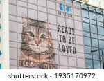 battersea  london  england ... | Shutterstock . vector #1935170972