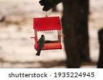 Handmade Cute Red Bird House...