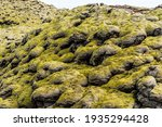 Rock Mound Shapes In Iceland...