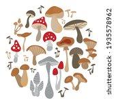 Mushroom Set Of Vector...