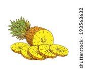 pineapple  vector hand drawing | Shutterstock .eps vector #193563632