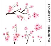 branch tree vector illustration ... | Shutterstock .eps vector #1935684085