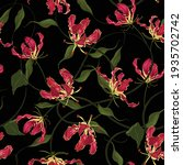 red flame lily flowr botanical... | Shutterstock .eps vector #1935702742
