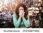 Young Woman Sneezing In Park....
