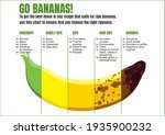 when to eat a banana. usage...   Shutterstock .eps vector #1935900232