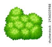 lush underwood or bush as...   Shutterstock .eps vector #1936035988