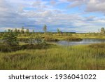 A Very Beautiful Marsh Lake...