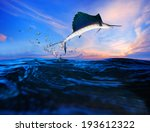 Sailfish Flying Over Blue Sea...
