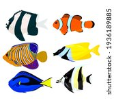 Set Of Tropical Fish  Vector...