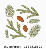 conifer branches vector... | Shutterstock .eps vector #1936518922