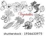 vegetable set. potatoes ... | Shutterstock .eps vector #1936633975
