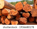 Pile Of Wooden Logs Stacked...