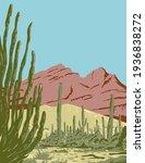 Organ Pipe Cactus National...