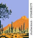 Saguaro Cactus Or Carnegiea...