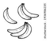 banana vector illustration hand ...   Shutterstock .eps vector #1936986235