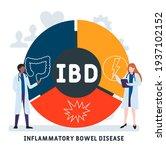 ibd   inflammatory bowel... | Shutterstock .eps vector #1937102152