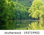 River With Trees Svratka Brno...
