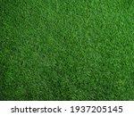 Green Grass Field On Outdoors.