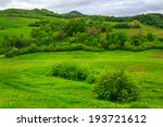 mountain summer landscape.forest near meadow on hillside under  cloudy sky - stock photo
