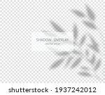 shadow overlay effect. natural...   Shutterstock .eps vector #1937242012