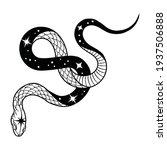 Black Snake Vector Illustration ...