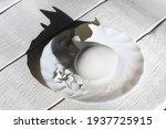 White Chicken Egg And Eggshells ...