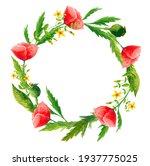 Watercolor Wild Flowers Poppy...