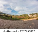 Vineyards Prepared For The...