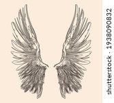 Two Spread Wings Of An Angel...